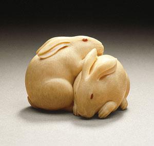 rabbits300