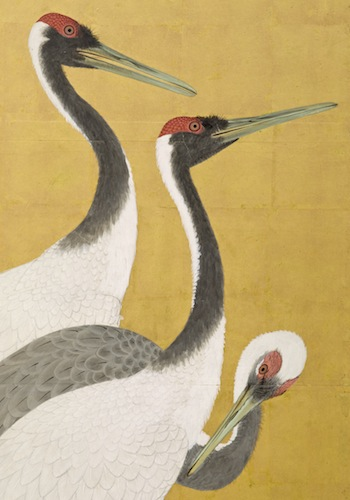 Maruyama Okyo, Cranes (detail), 1772 (An'ei period, 1772-1780), gift of Camilla Chandler Frost in honor of Robert T. Singer