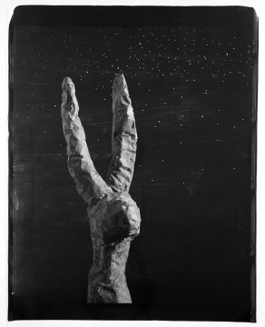 John Divola, Rabbit, 87RBA1, 1987–89, © John Divola