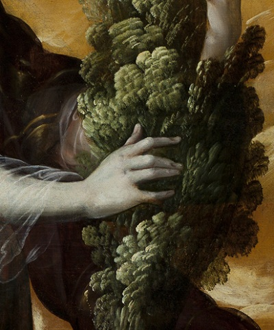 Juan Correa, Angel Carrying a Cypress (Ángel portando un ciprés) (detail), c. 1670–90