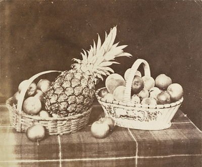 William Henry Fox Talbot, A Fruit Piece, 1844–46, the Marjorie and Leonard Vernon Collection, gift of The Annenberg Foundation, acquired from Carol Vernon and Robert Turbin